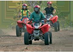 Livingstones Quad Biking Safari