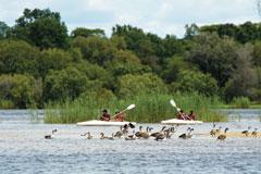 Makora Quest Zambezi River Canoe
