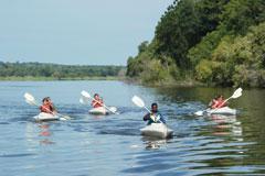 Makora Quest Zambezi River Guided Safari
