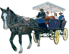 Victoria Carriage Company Horse Drawn Carriage