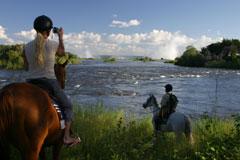 Victoria Carriage Horse Riding