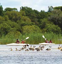Canoe the Zambezi