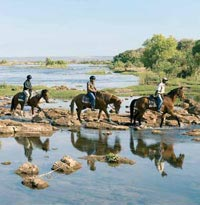 Cross the Zambezi River on Horseback